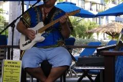 royal-palm-may-2010